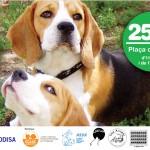 Participació a la Jornada per l'adopció i contra l'abandó animal