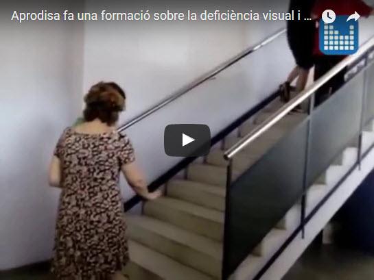Formació sobre deficiència visual, dins el programa Padiva